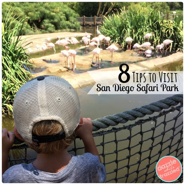 8 ideas for visiting the San Diego Safari Park with family | DazzleWhileFrazzled.com