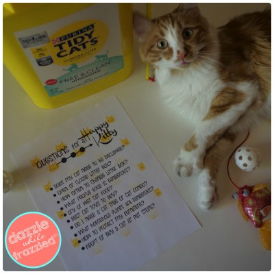 Checklist for bringing home a new kitty. Free printable download for questions to think about before getting a cat.