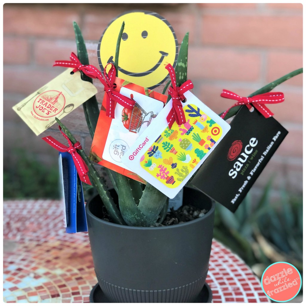 Make a cute, fun and affordable gift card holder with a potted plant.