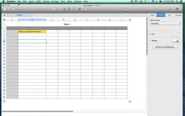 Password Spreadsheet Template Password Spreadsheet Template Data ...