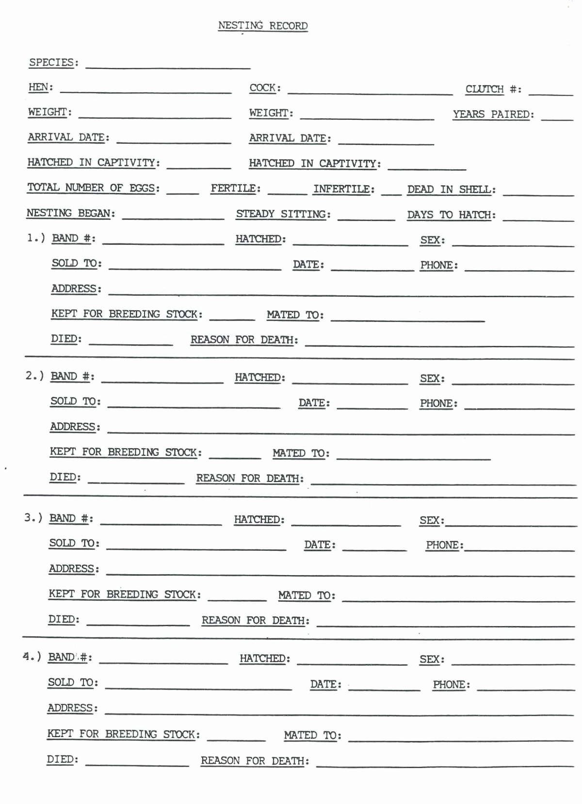Tax Organizer Worksheet For Small Business Lovely
