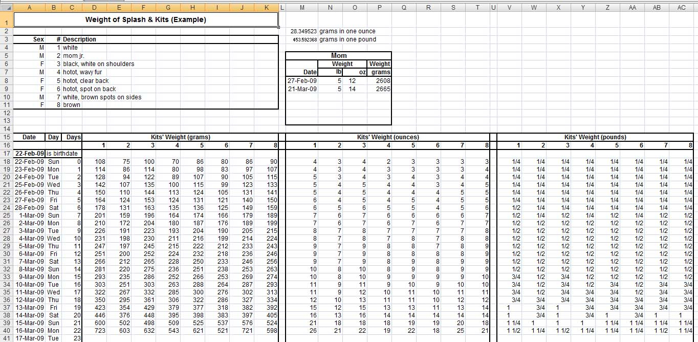 Medicine Spreadsheet Google Spreadshee internal medicine