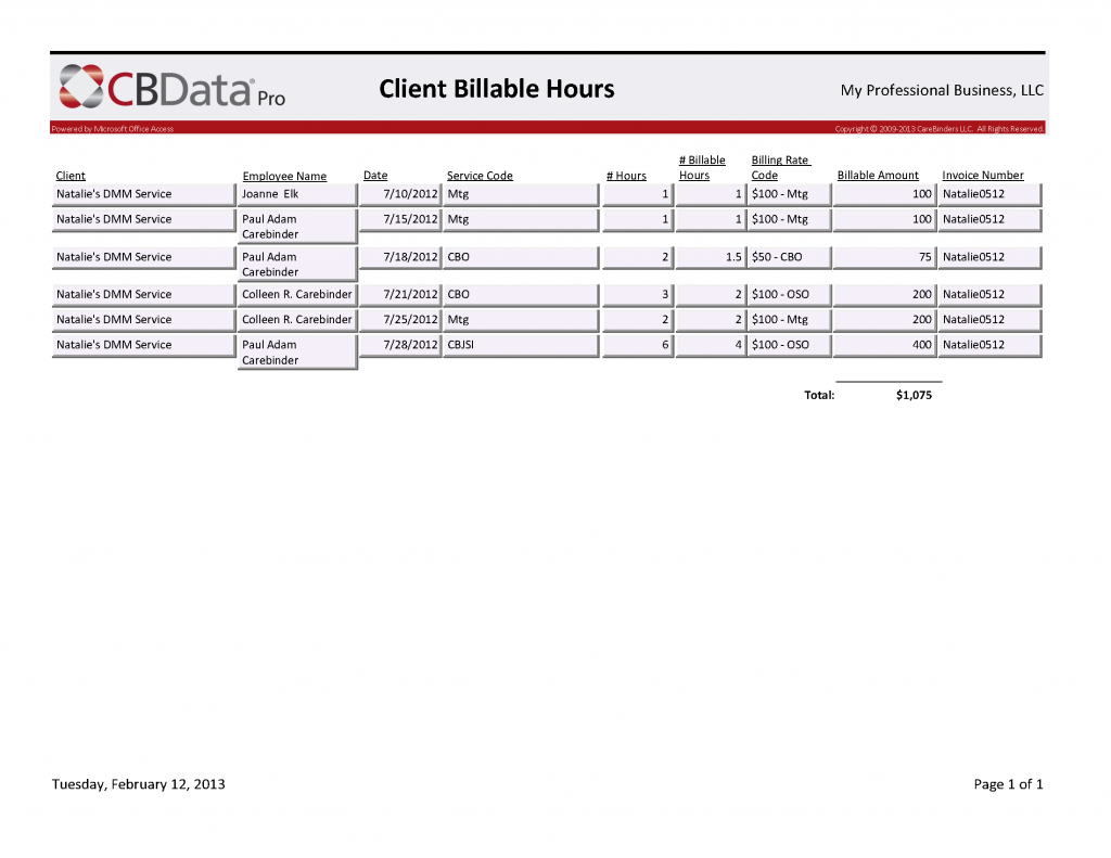 Spreadsheet Consulting Throughout Consultant Billable