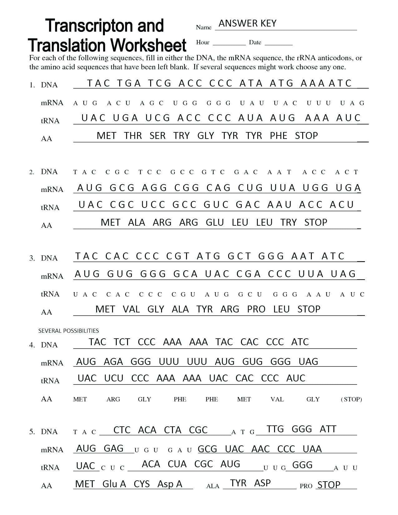 Accuracy And Precision Worksheet Answers Worksheet Idea