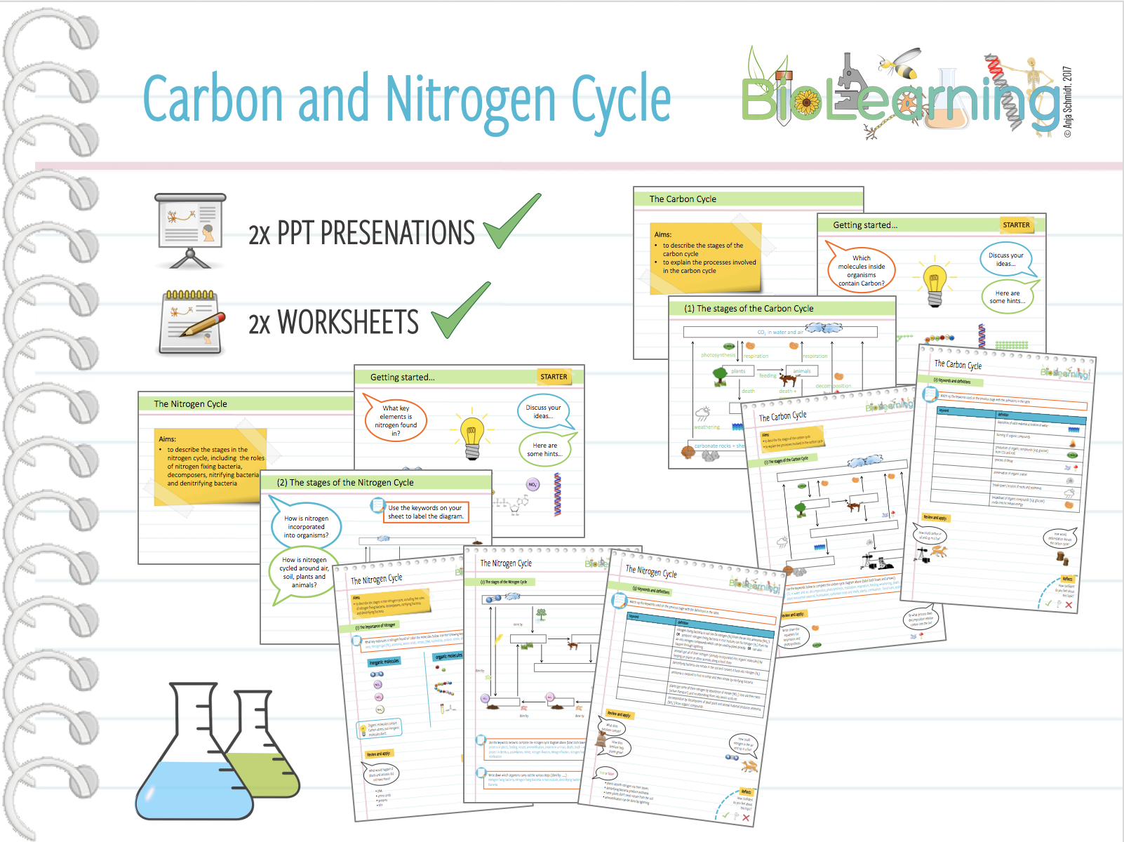 Afl Quiz And Worksheets The Carbon Cycle