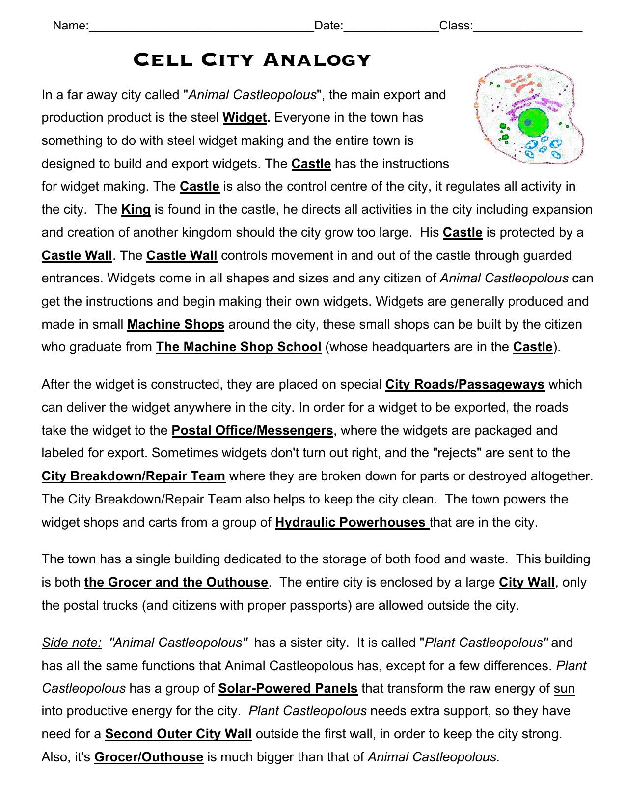 Cell Cityogy Worksheet Db Excel