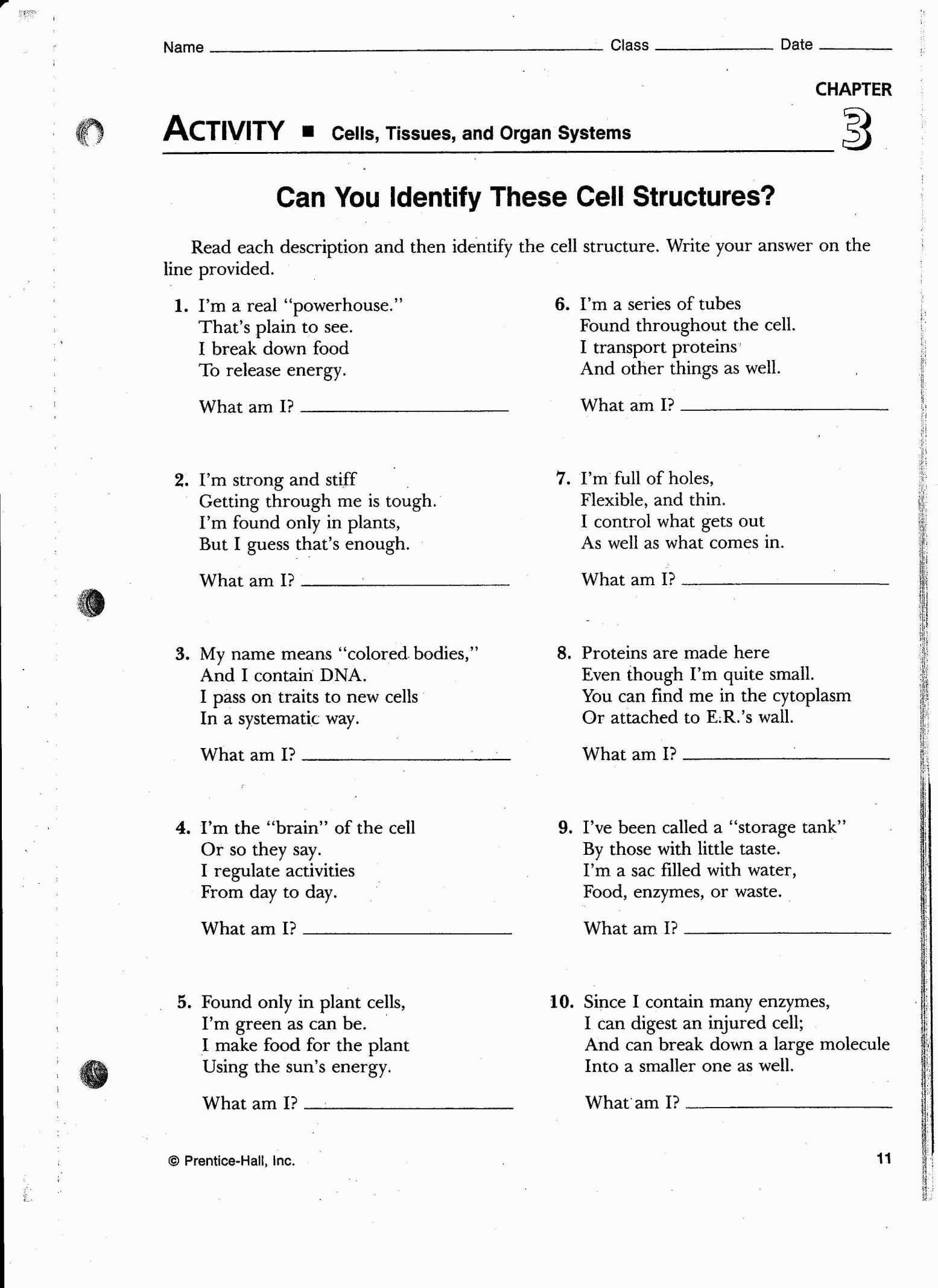 Cell Review Worksheet Fraction Worksheets Order Of