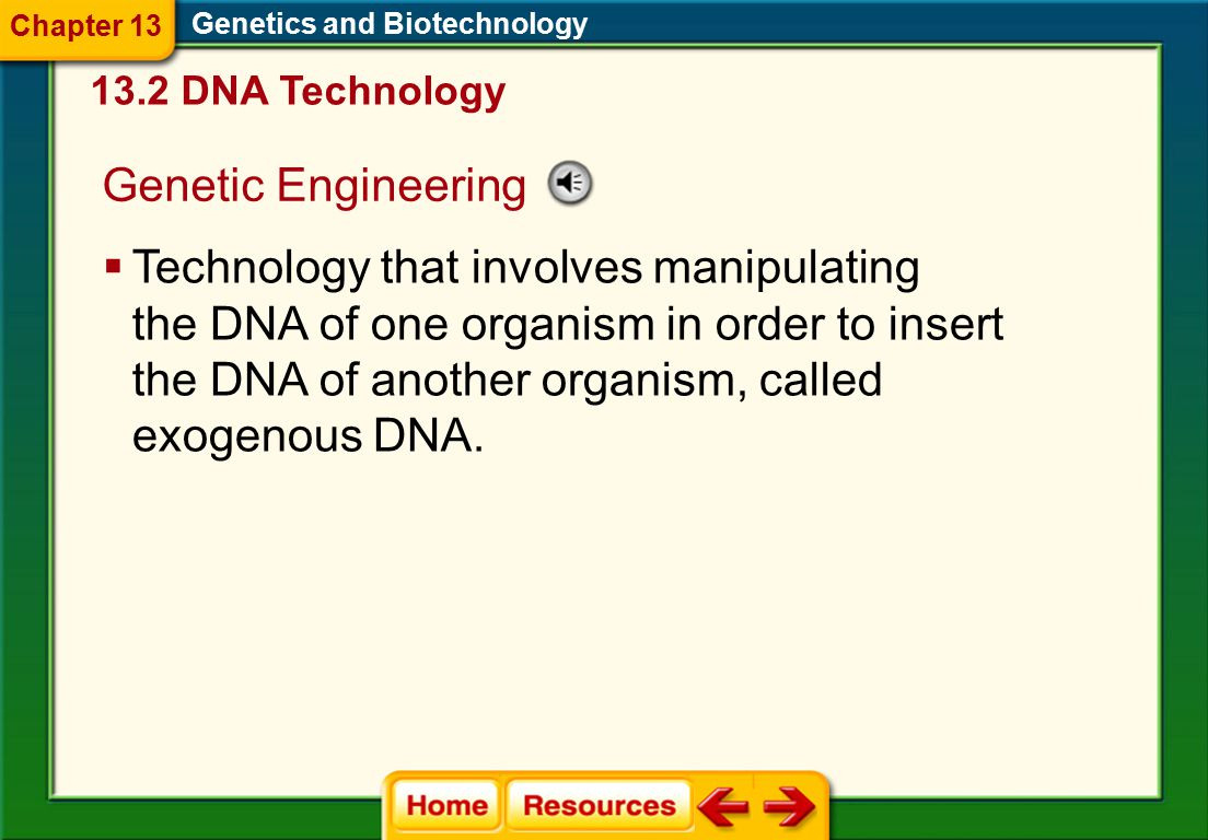 Chapter 13 Genetics And Biotechnology Ppt Download