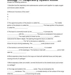 Fifth Grade Circulatory System Worksheets   Printable Worksheets and  Activities for Teachers [ 1650 x 1275 Pixel ]