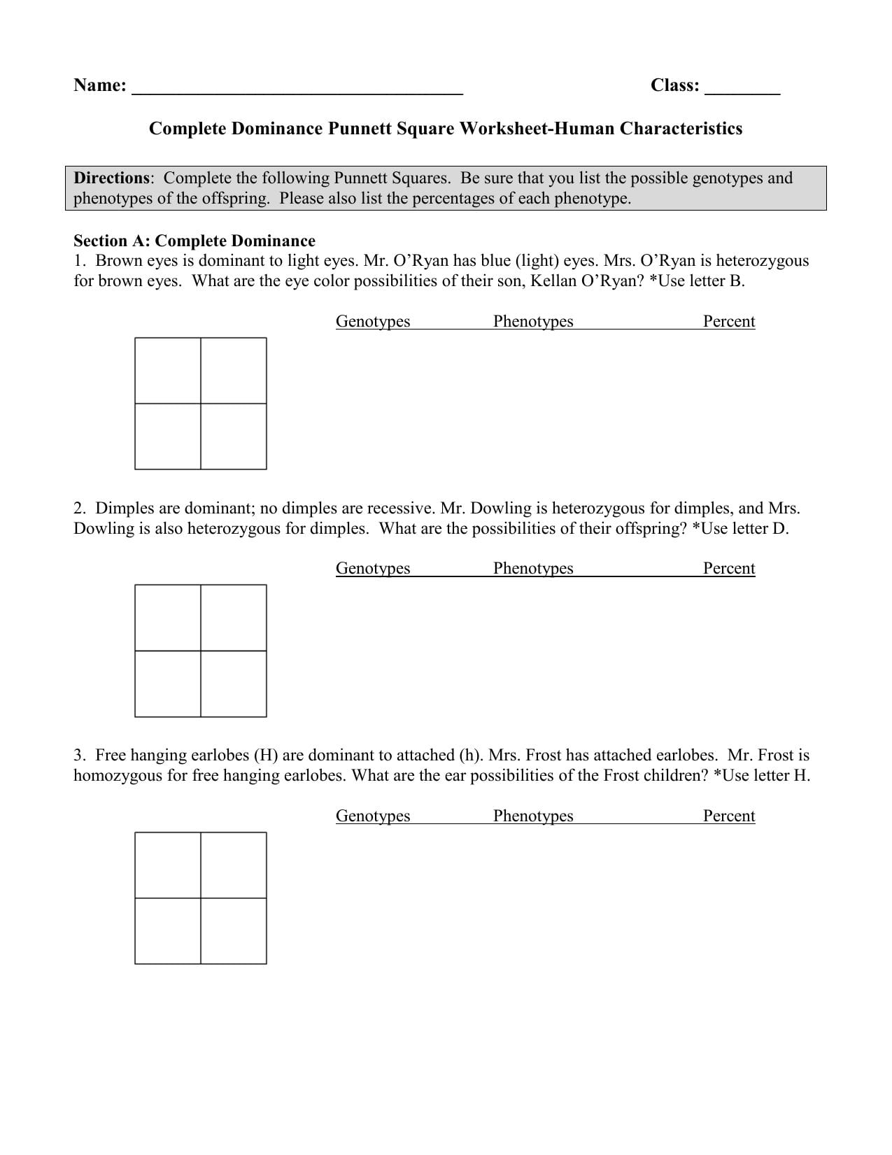 Complete Dominance Punnett Square Worksheet