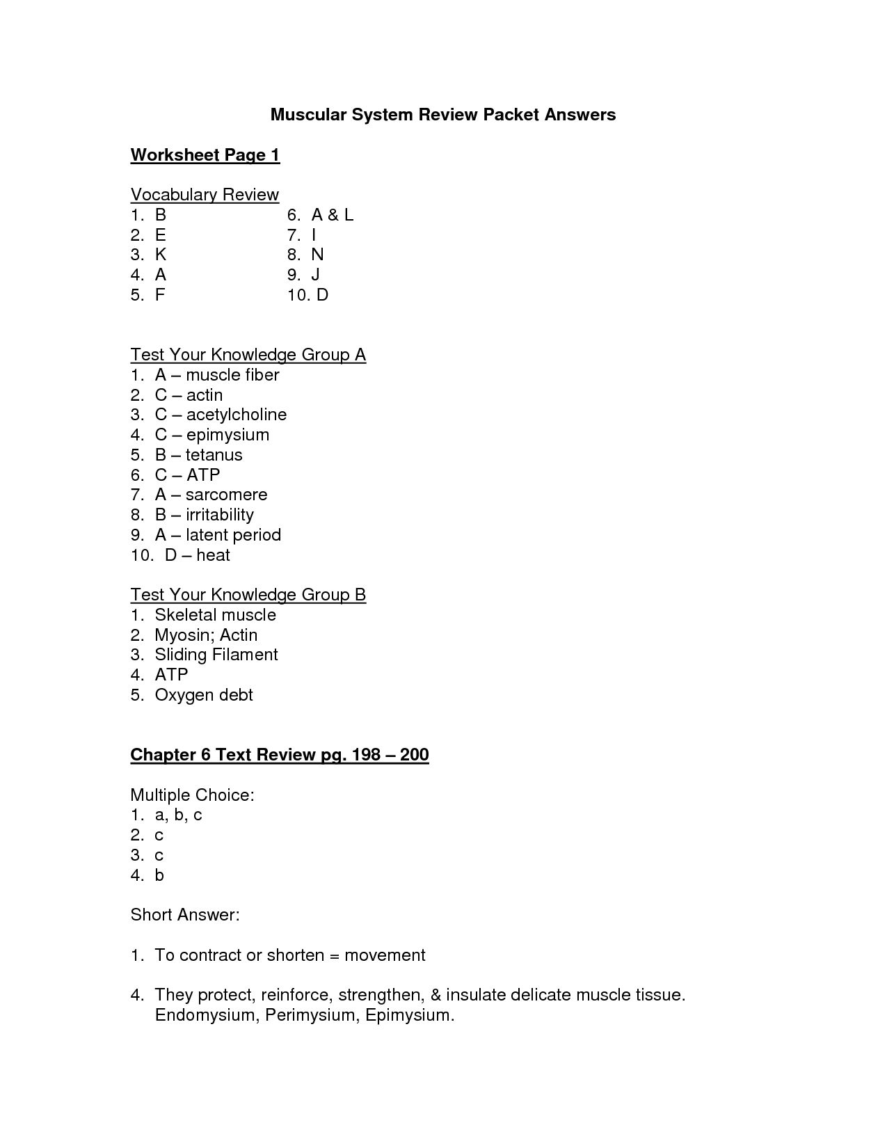 The Human Digestive System Worksheet Answers