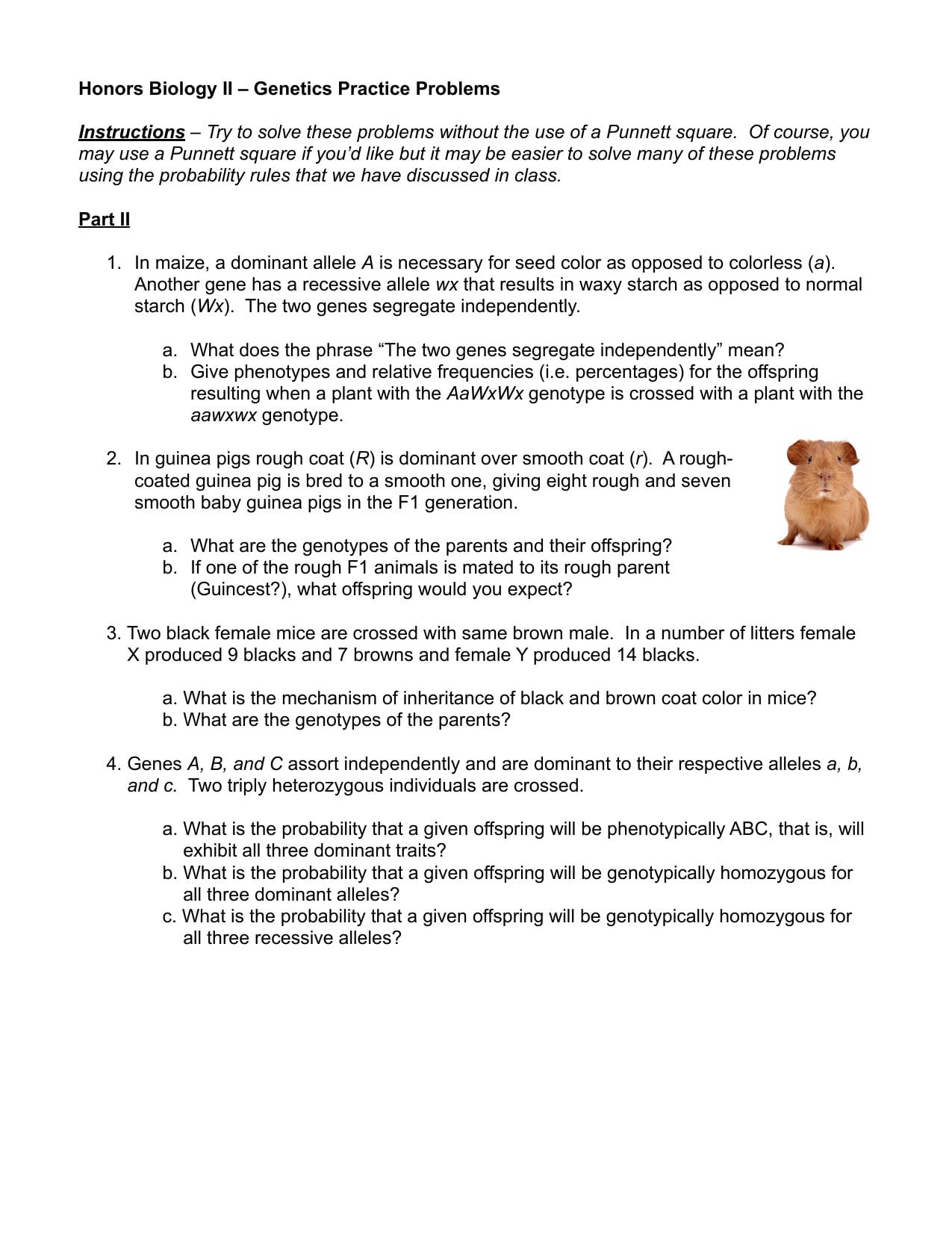 Genetics Practice Problems Worksheet Key