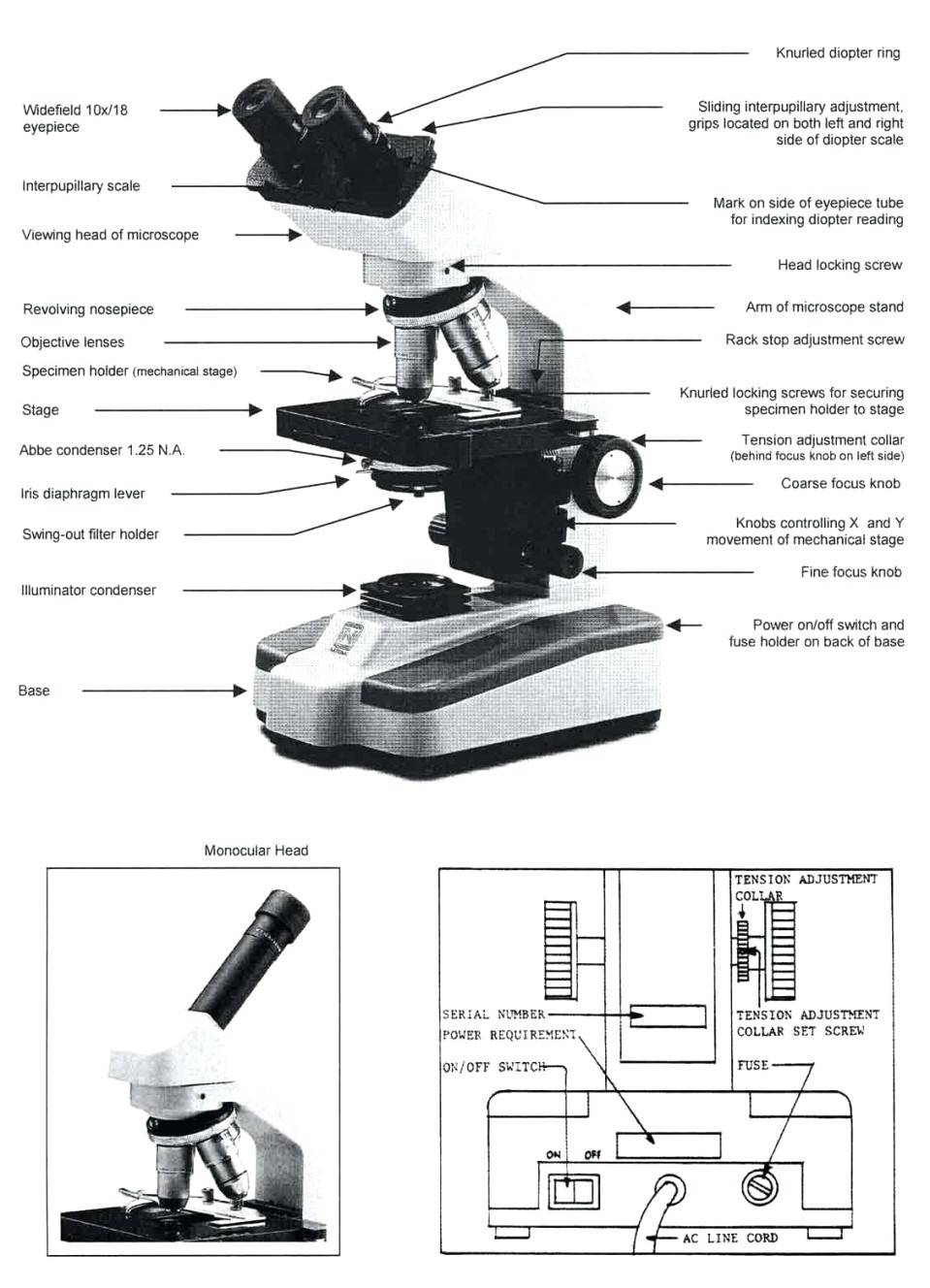 Microscope Drawing Worksheet At Paintingvalley Explore