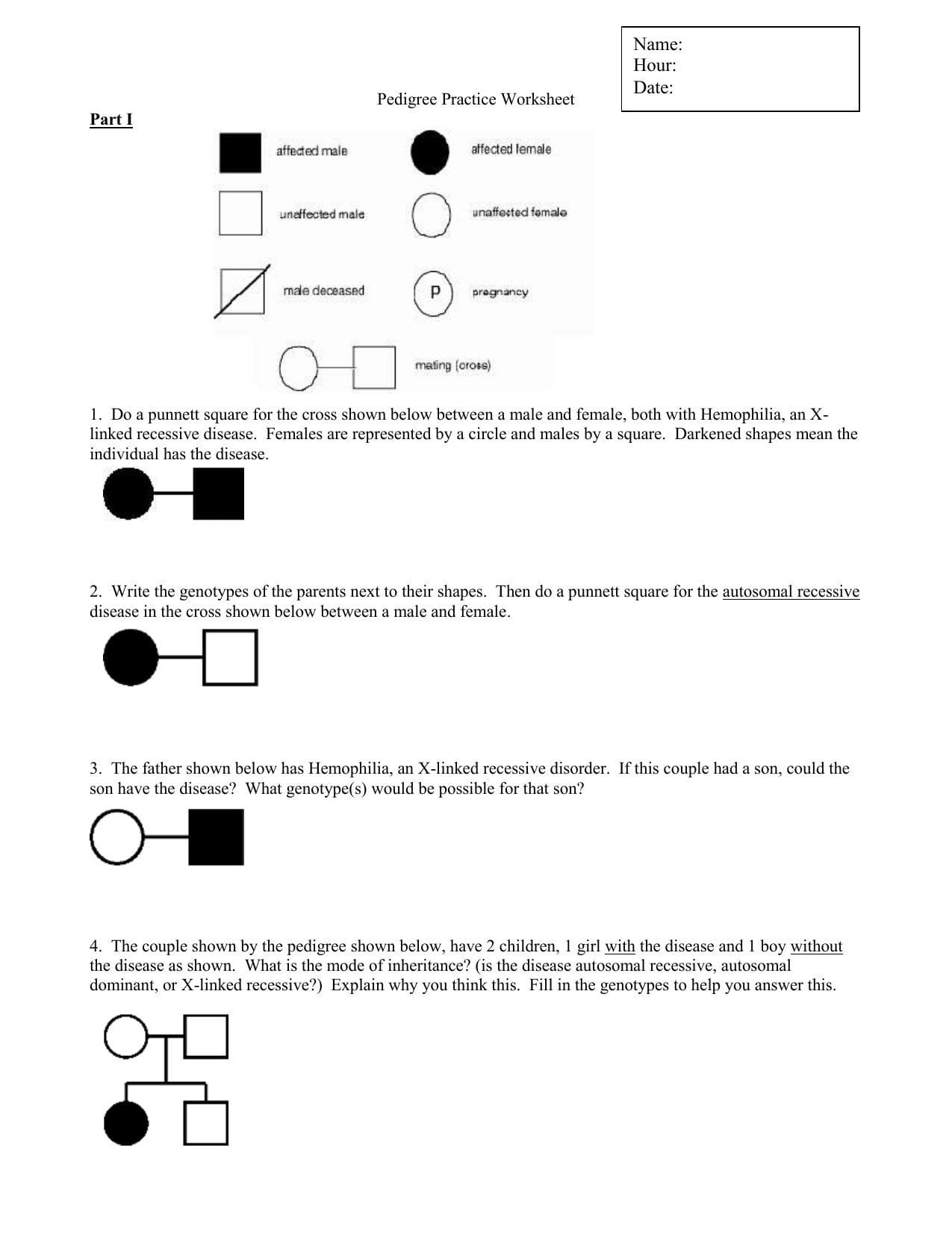 Pedigree Practice Worksheet Welcome To