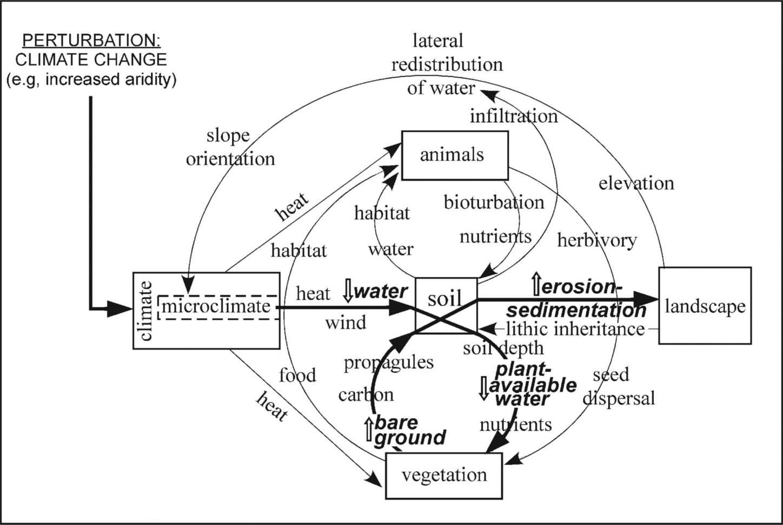 Pond Water Microscope Lab Worksheet
