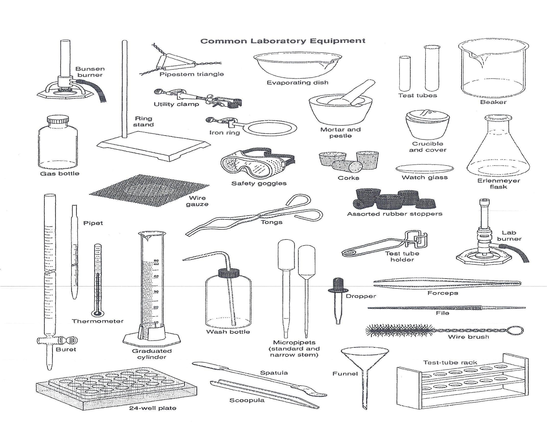Lab Equipment Worksheet Answer Key