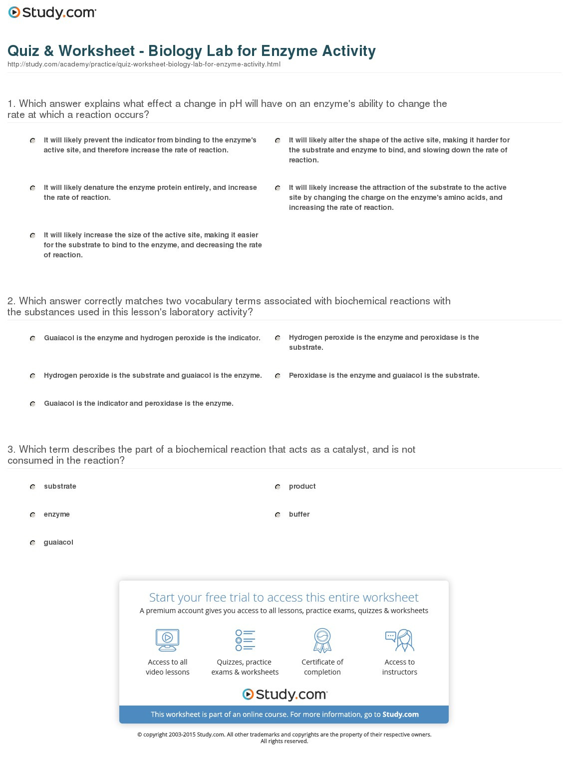 Quiz Worksheet Biology Lab For Enzyme Activity Study