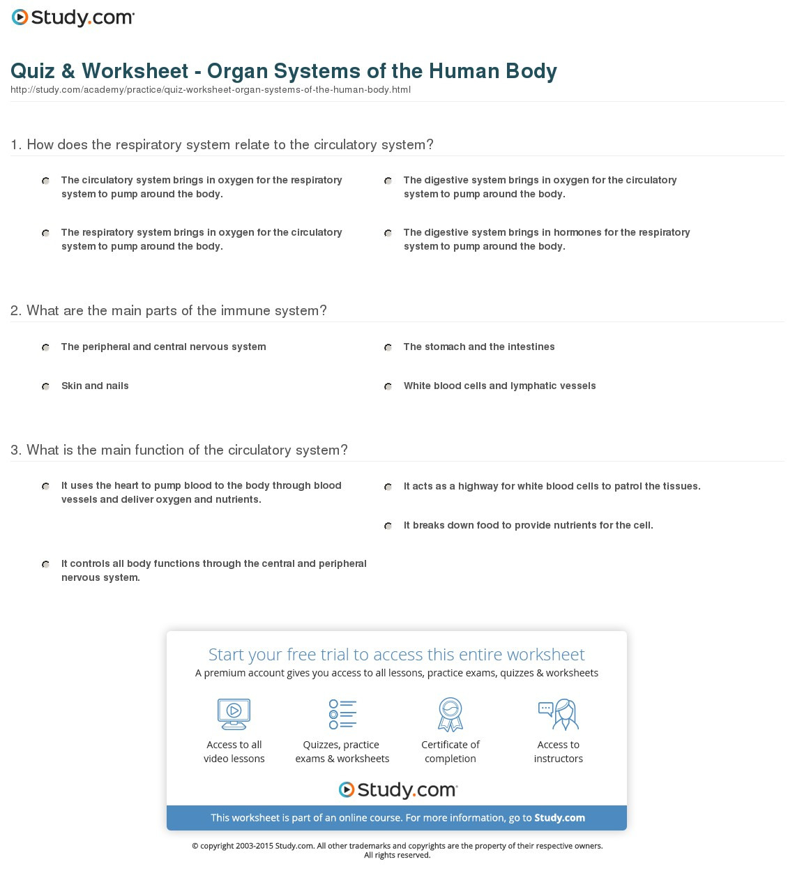 Human Body Systems Worksheet Answer Key