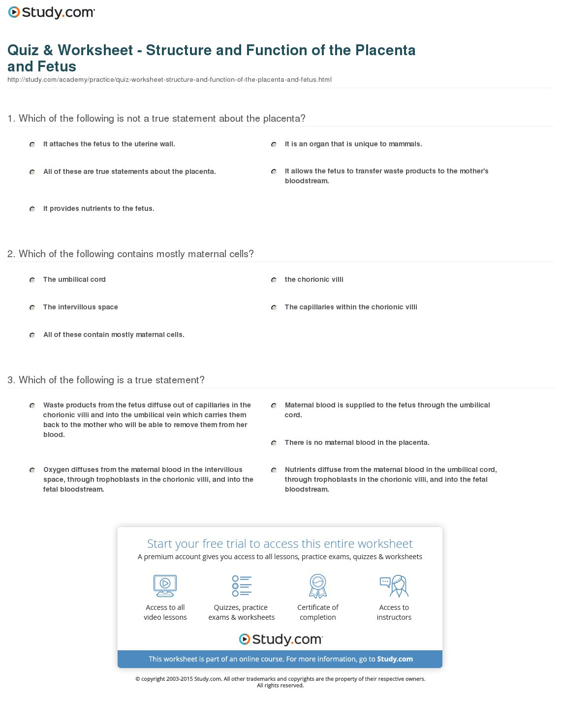 Quiz Worksheet Structure And Function Of The Placenta