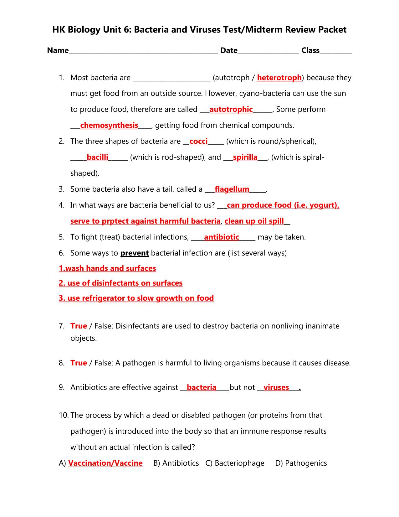 Characteristics Of Bacteria Worksheet Answers