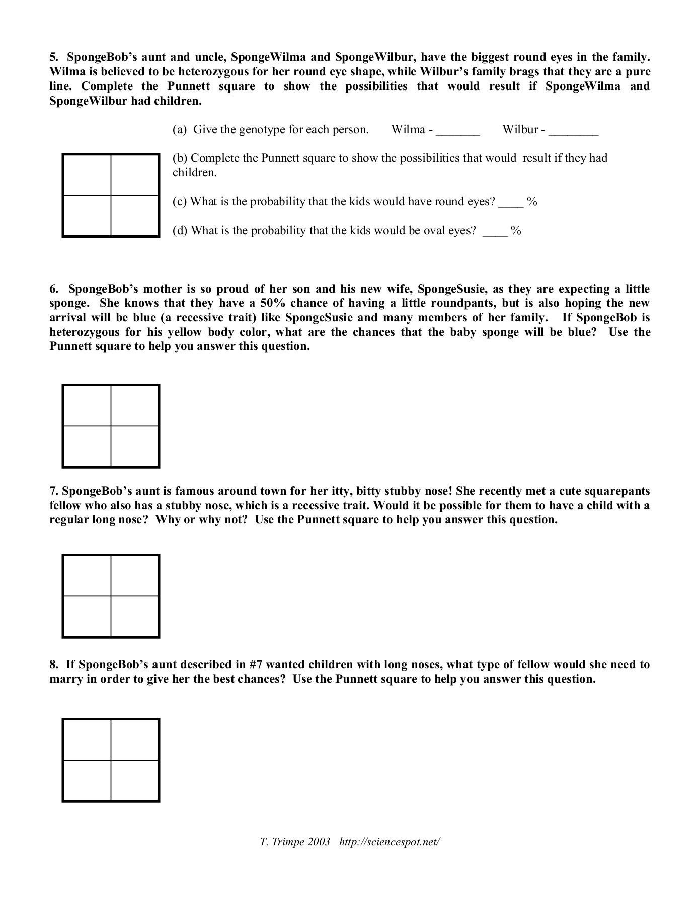 Spongebob Genotype Worksheet Answers