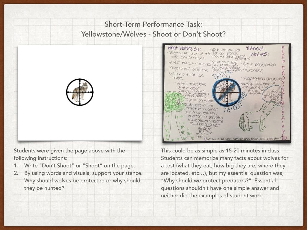 Wolves In Yellowstone Worksheet