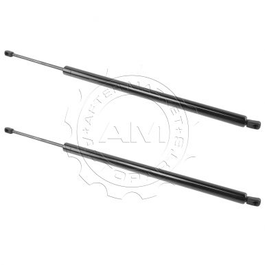 Honda Odyssey Hood & Hatch Lift Supports at AM Autoparts