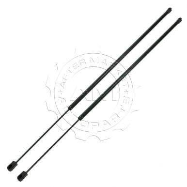 Buick LeSabre Hood & Hatch Lift Supports at AM Autoparts