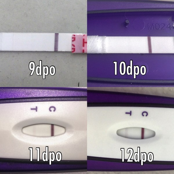 20+ 16 Dpo Faint Positive Pregnancy Test Pictures and Ideas on Meta