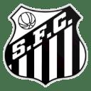 Santos vs Palmeiras Prediction
