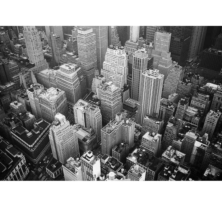 Scegli un'altro poster tra una vasta gamma di prodotti correlati : Murale Della Citta Di New York Aerea In Bianco E Nero Tenstickers