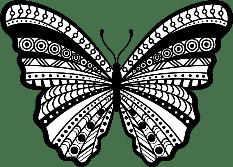 autocollant tuning papillon noir et blanc