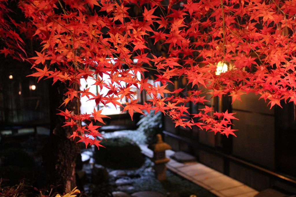 100 Years Old Kyoto Gardener House Hotels Book Now