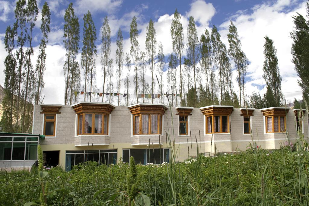 The Pong Guest House Leh Hotels Book Now
