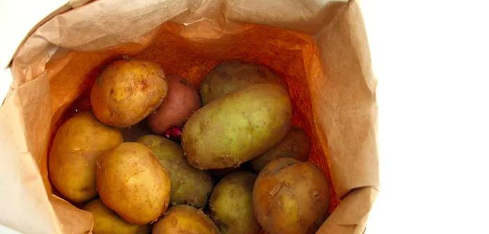patates-saklama
