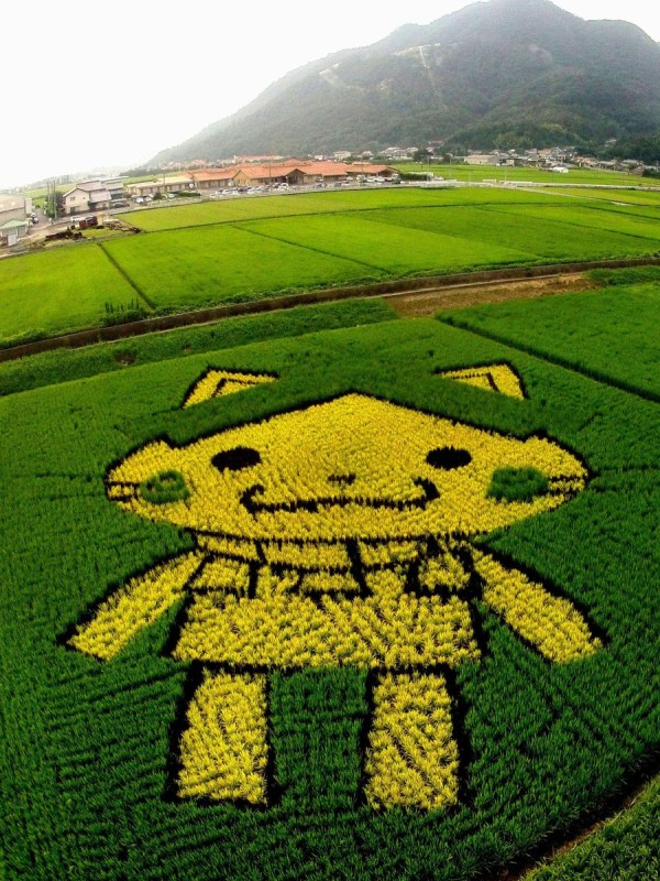 Rice Paddy Art Japan