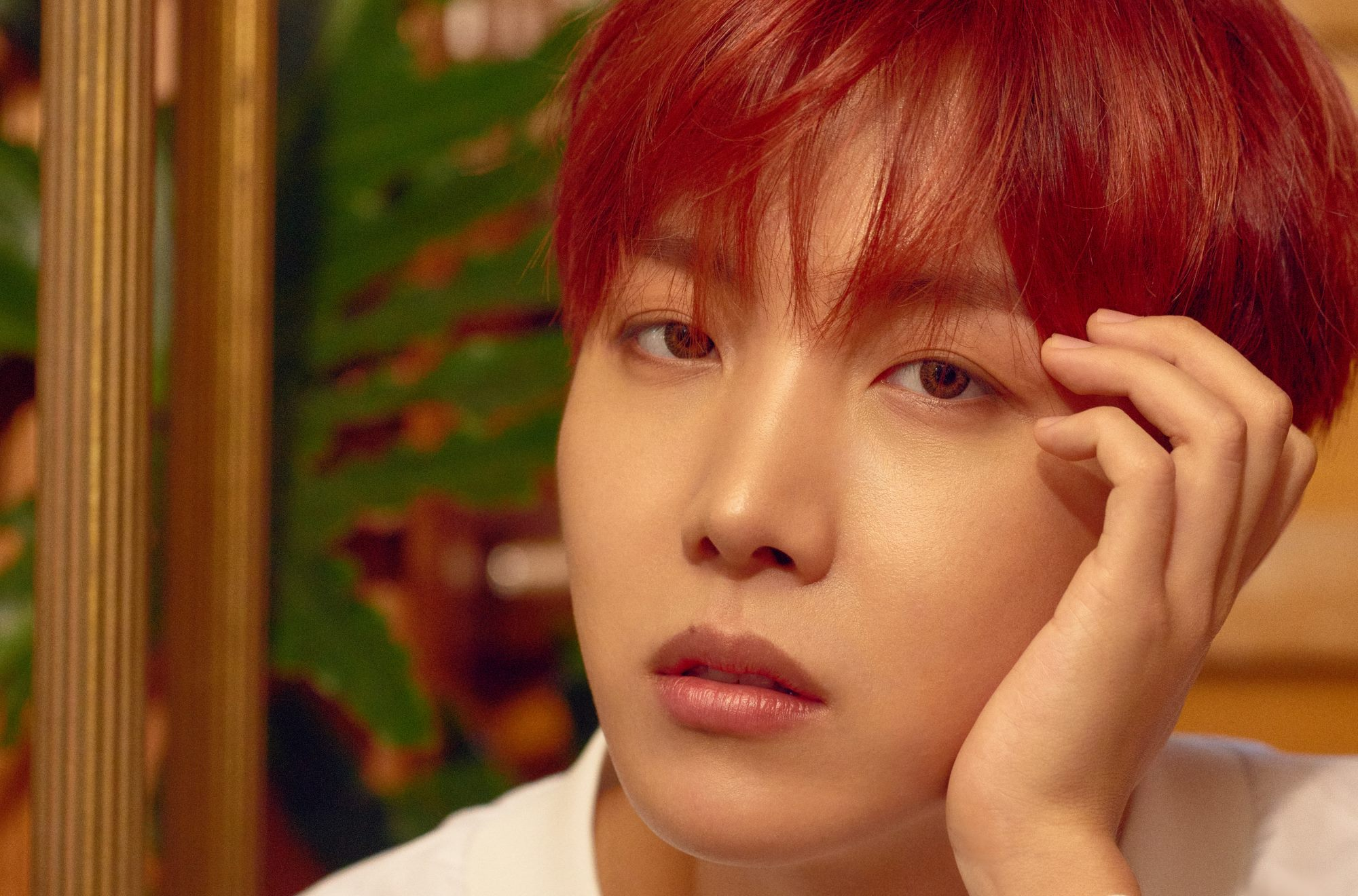 J-Hope Profile