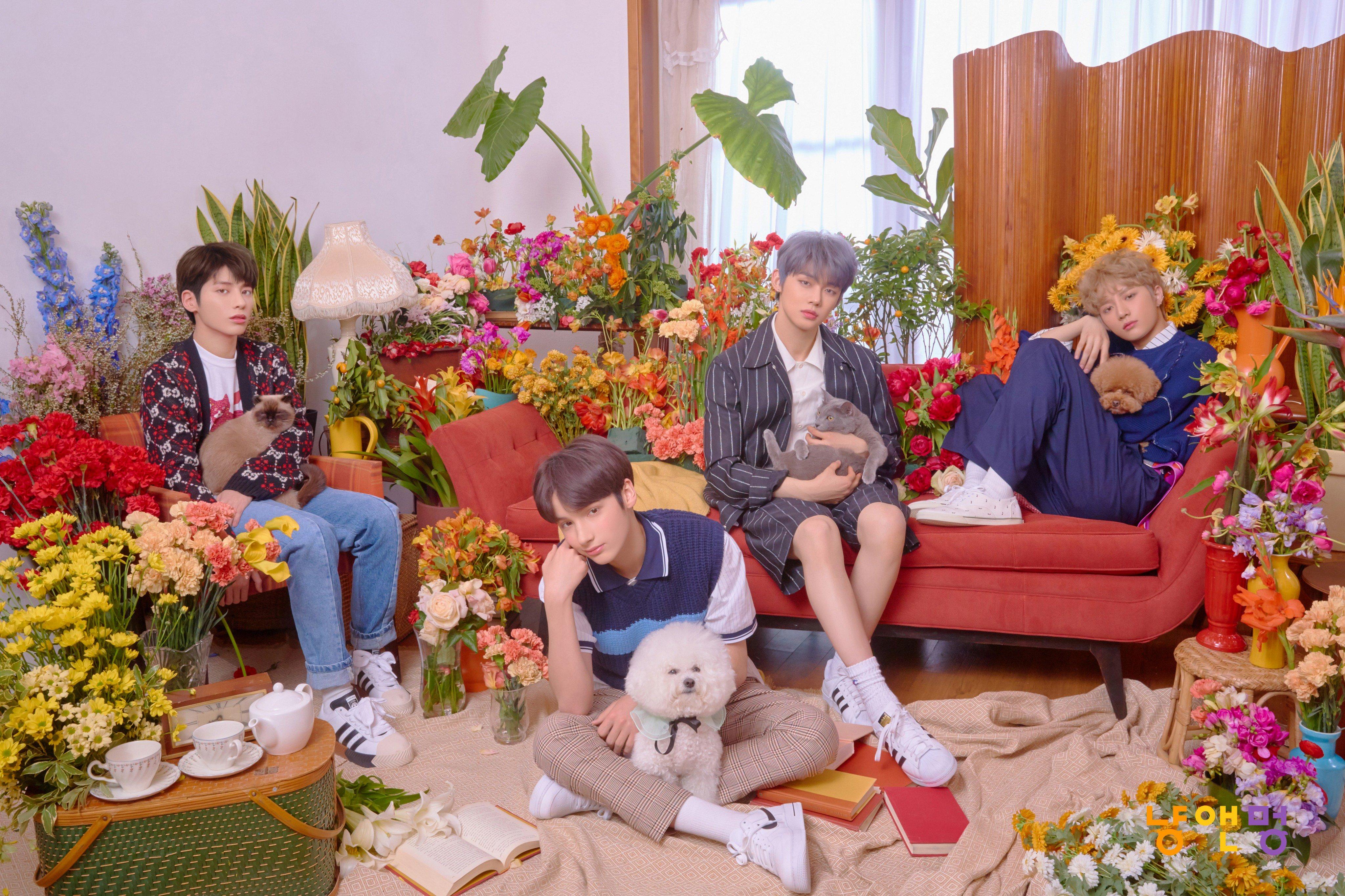 Shinee Dream Girl Wallpaper Txt Hueningkai Taehyun Cat Amp Dog Concept Photos K Pop