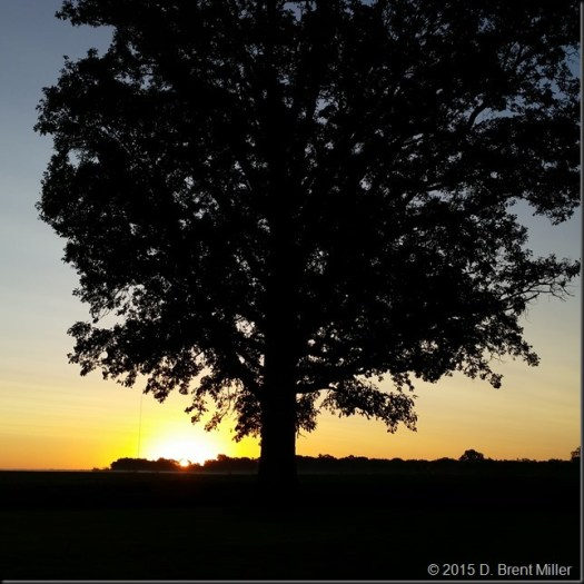 Sunrise-20150722