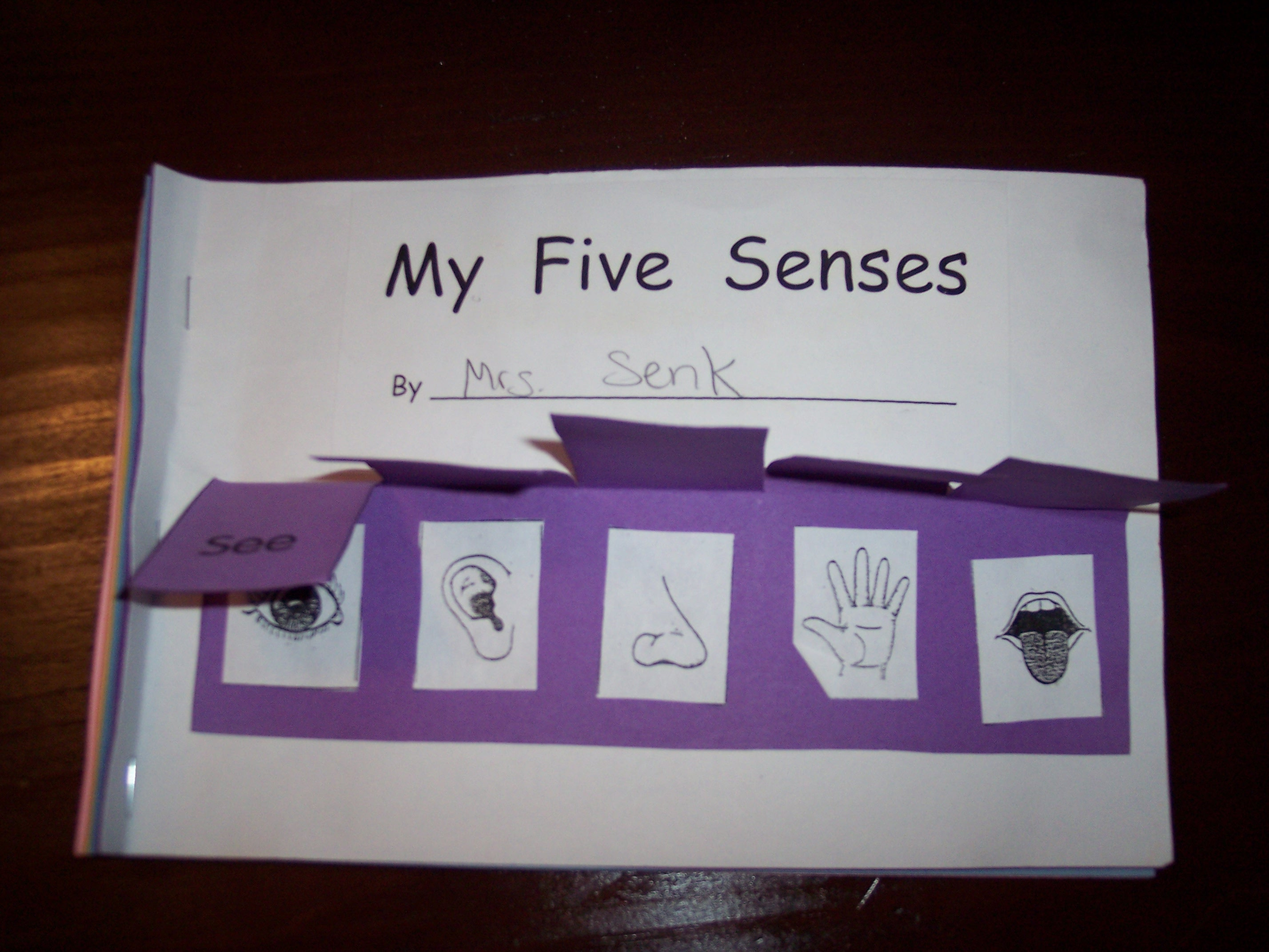 Five Sense Worksheet New 521 Five Senses Preschool Books