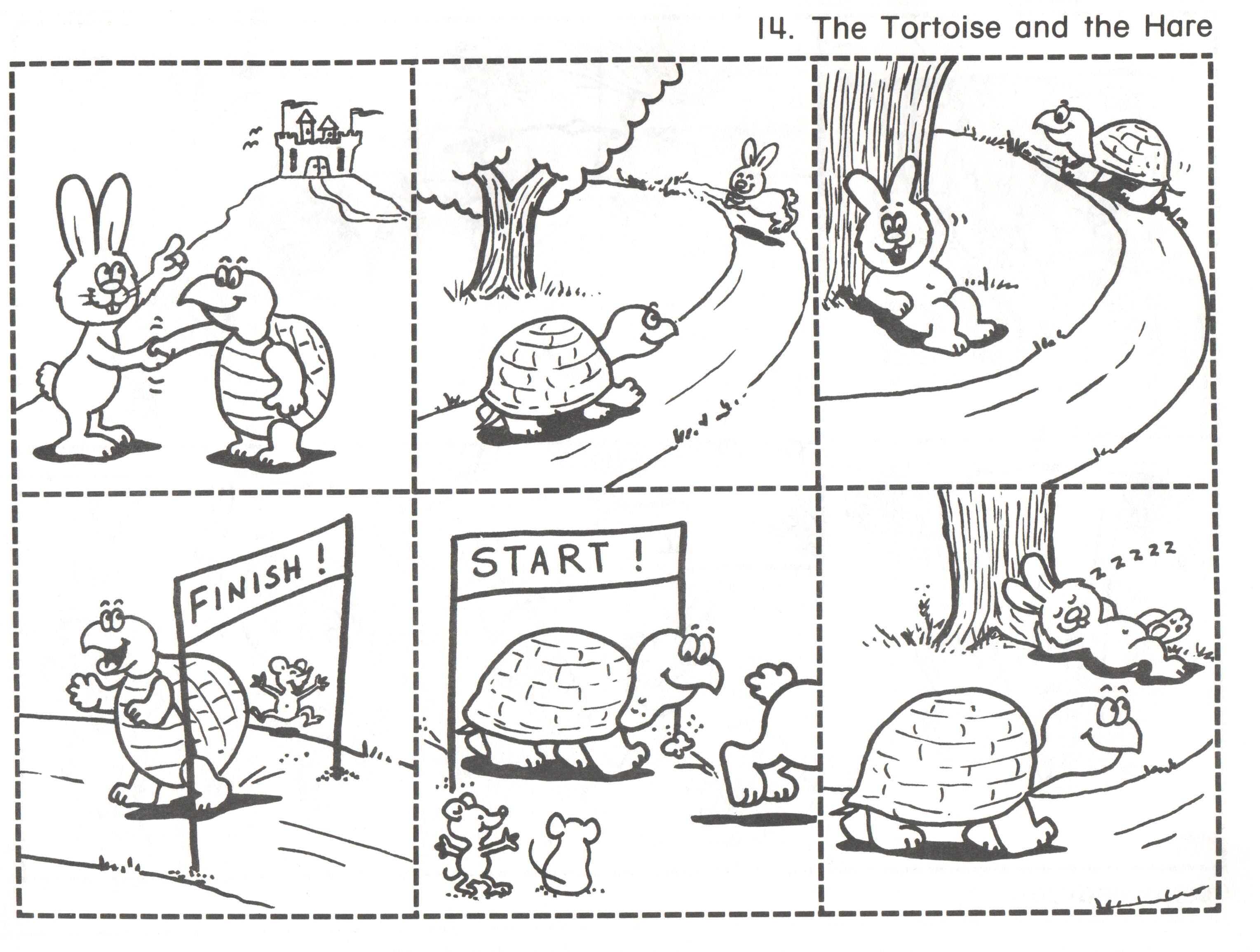 14 Tortoise And Hare