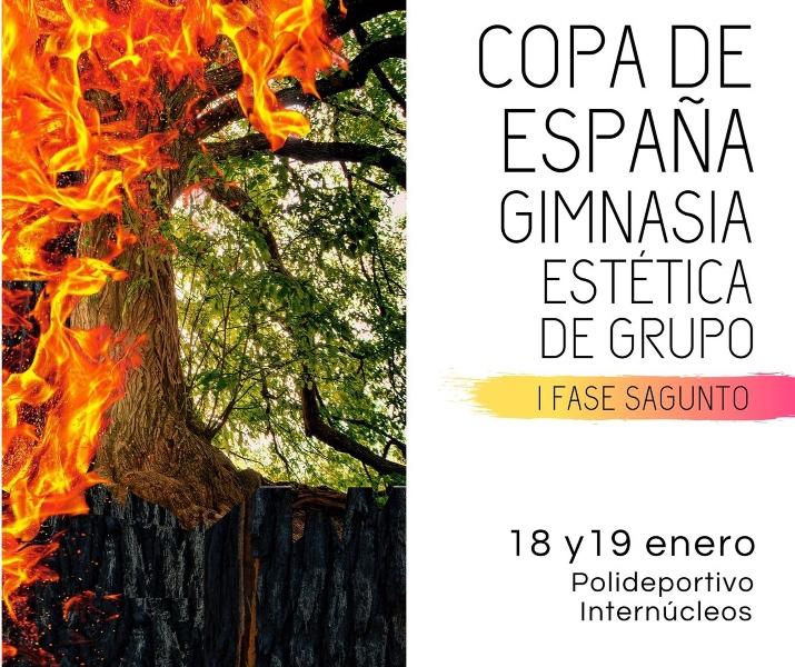 Copa España Gimnasia Estética