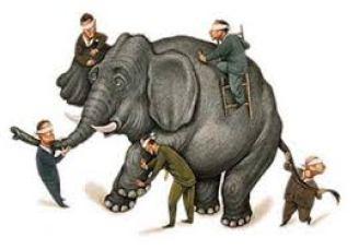 blindelephant