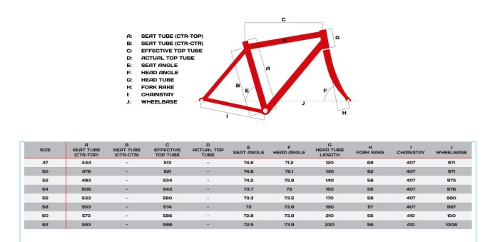 Trek Alpha Frame Size Guide | Frameviewjdi.org