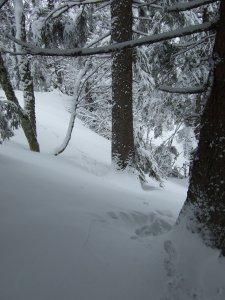 Mindestens 70cm tiefer Schnee.