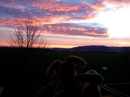 Sonnenaufgang über Wernigerode