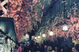 Cherry Blossom Pop-Up bar