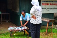 ibu penjual ikan segar