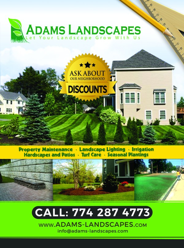 professional bold landscaping