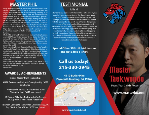 Bold Playful Martial Art Flyer Design Master Taekwondo . Mediaproductionart